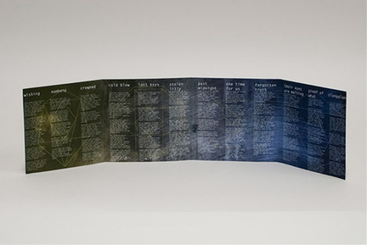 INNER FOLDOUT by Anna Zollicoffer // based on Erin Frazier